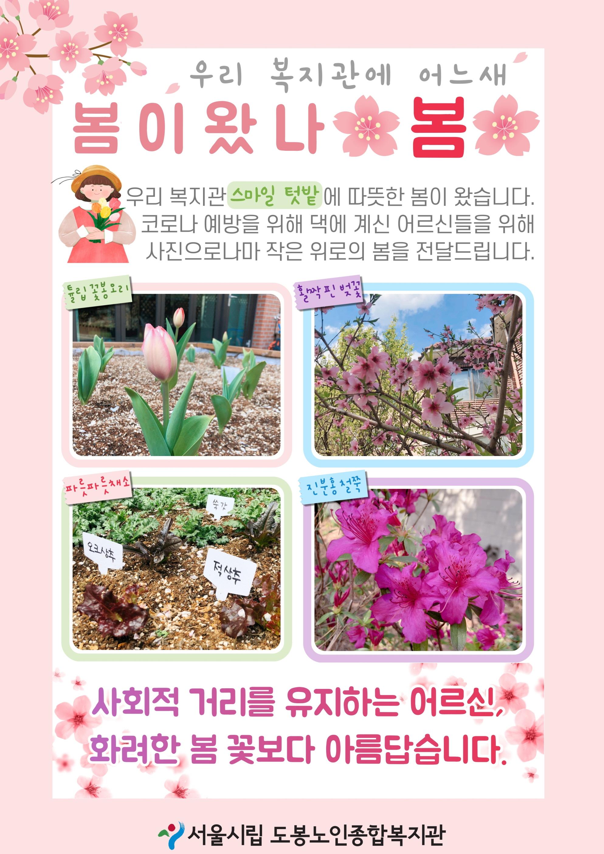 [홈페이지용]봄이왔나봄.jpg